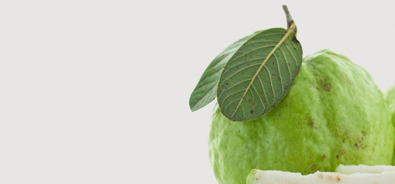 17-Best-Benefits-Of-Guava-Leaves-For-Skin-Hair-And-Health