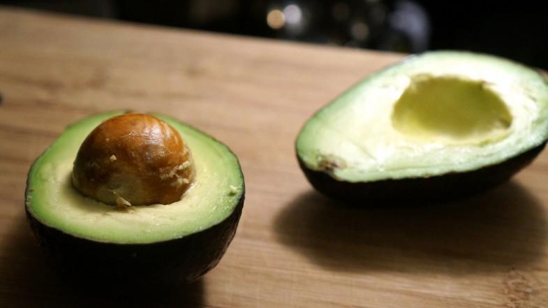 AvocadoToast8