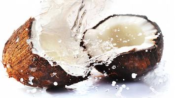 coconut-water-splash (1)