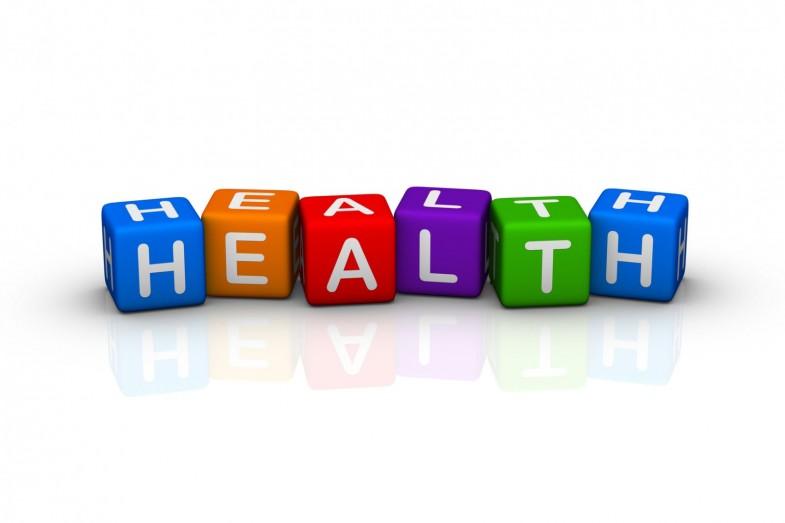 health_bricks