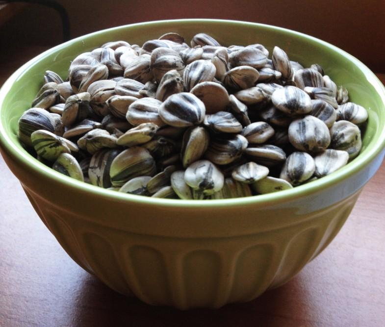 toasted-sunflower-seeds