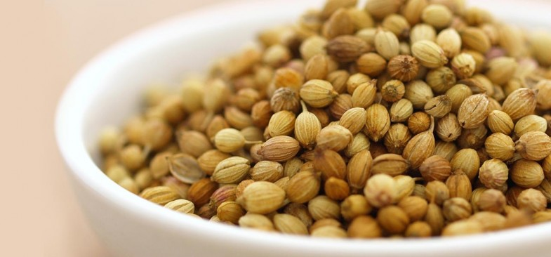 12-Amazing-Benefits-Of-Coriander-Seeds