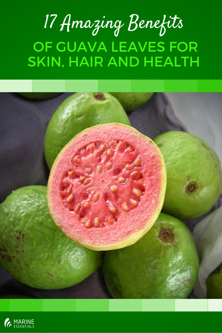 17 Amazing Benefits of Guava Leaves for Skin, Hair and Health (1)