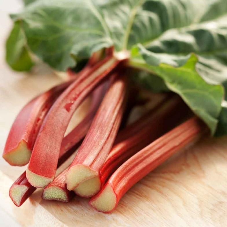 Rhubarb-timperley-early1