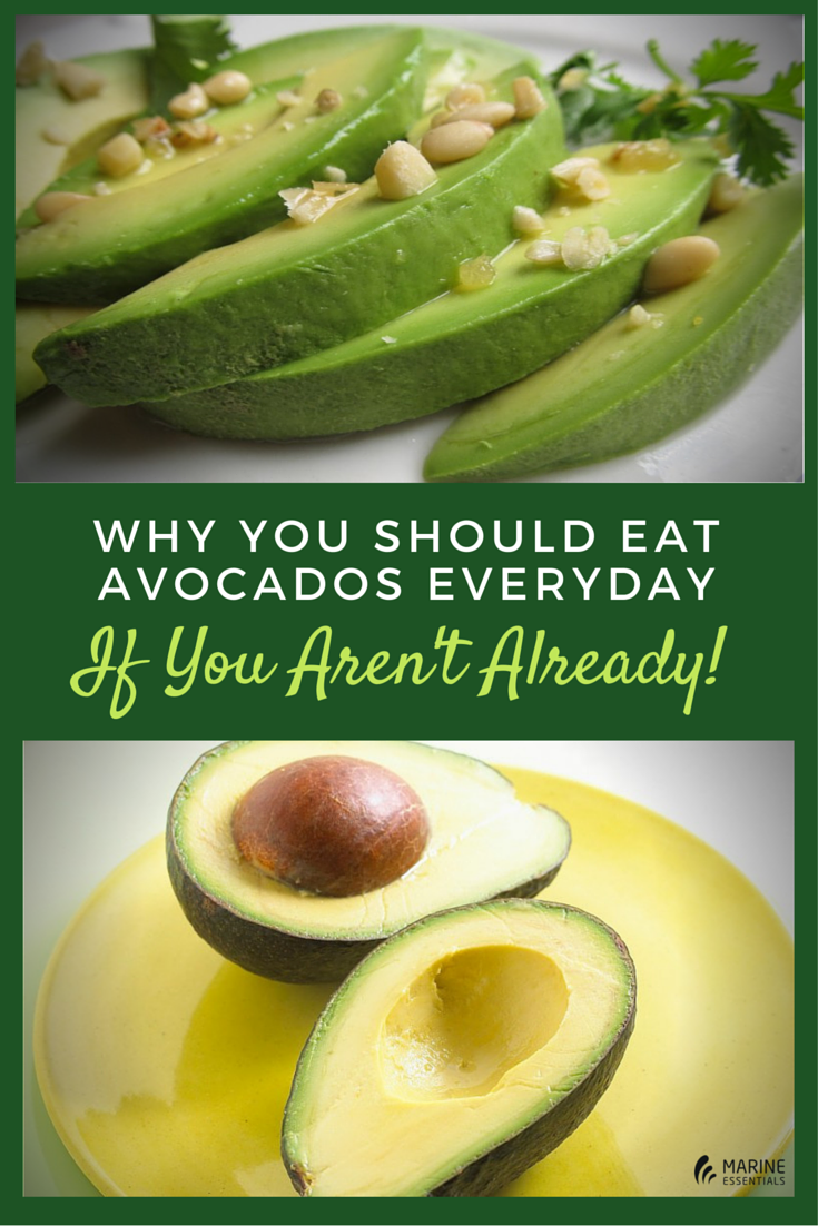 Why You Should Eat Avocados Every Day (If You Aren't Already!) (1)
