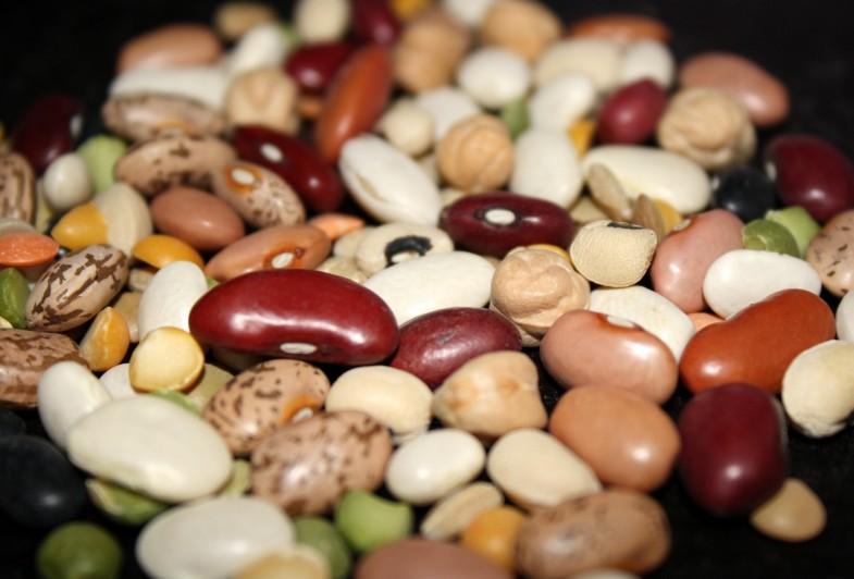 beans-04
