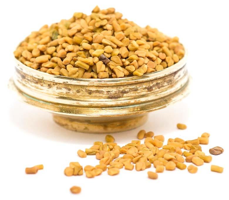 fenugreek-seeds--bukkehornsfr_-hel-asatrading_1