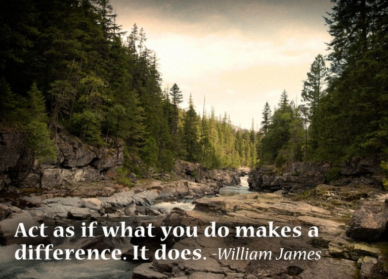 quotes_william-james_act-make-a-difference_tribal-simplicity