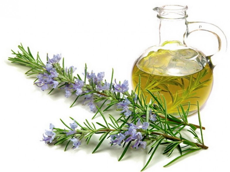 rosemary-oil-for-hair