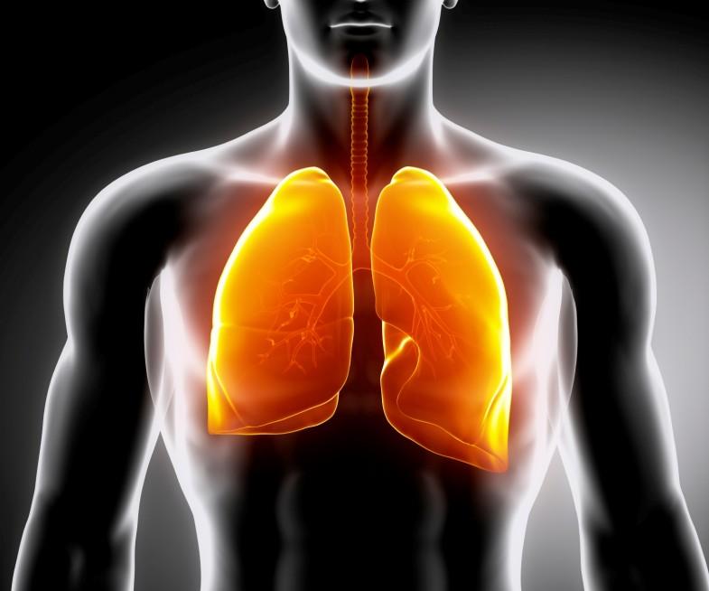 RespiratoryTract
