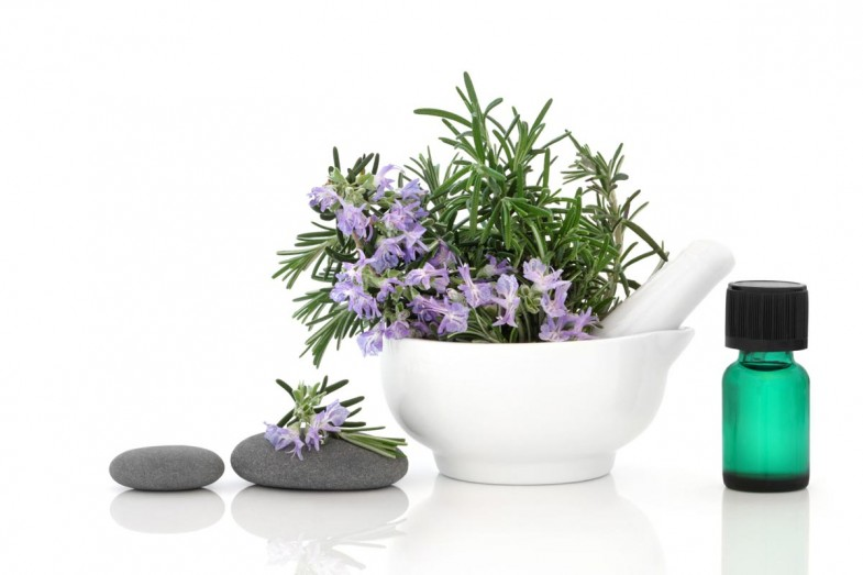 Rosemary-and-Its-Benefits-for-Good-Health