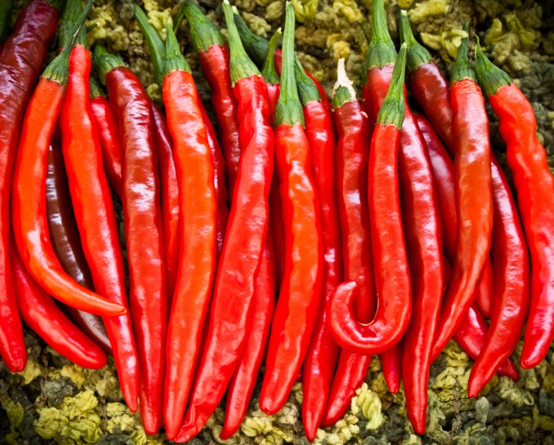 cayenne-pepper-lineup-photo