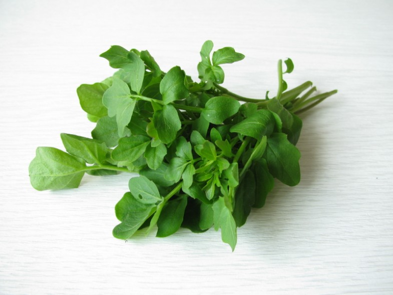 watercress-bunch