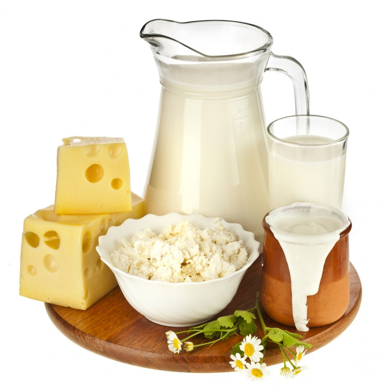 milkanddairyproducts