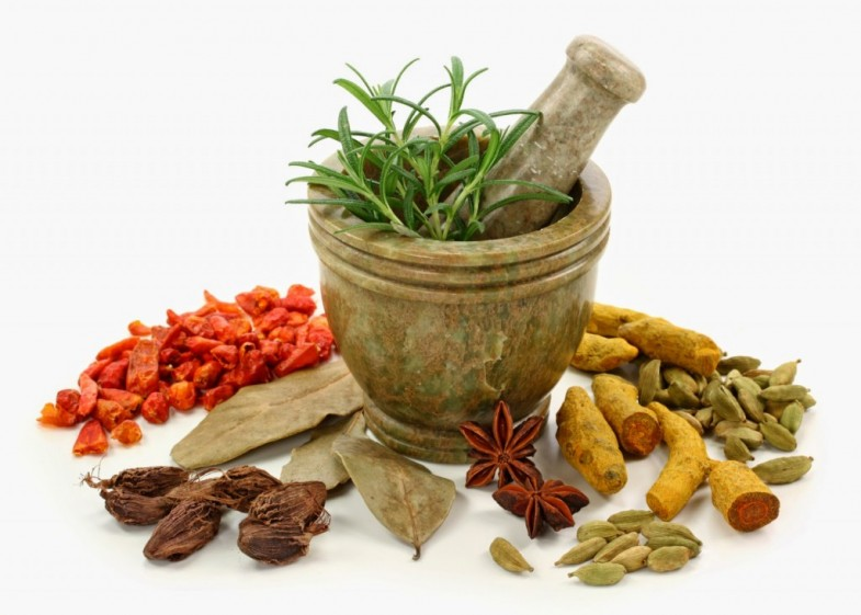 Ayurvedic-Herbs-for-Diabetes-1024x732