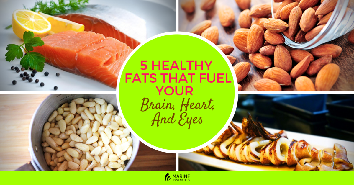 5 Healthy Fats That Fuel Your Brain, Heart, And Eyes (1)
